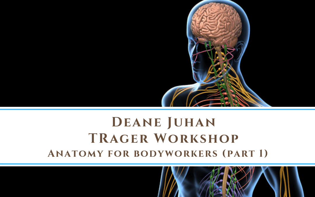 Deane Juhan Workshop: Anatomy for Bodyworkers Part 1