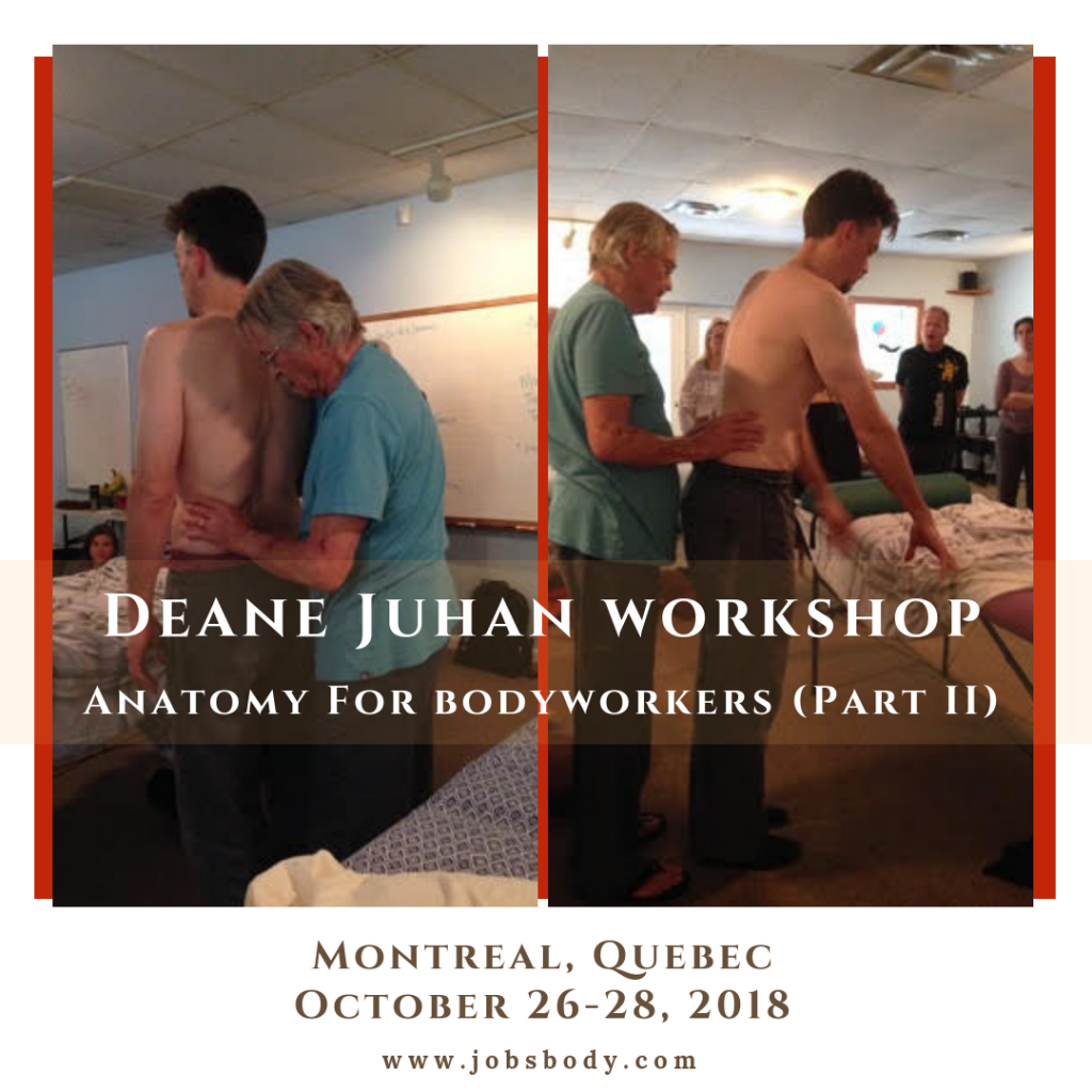 Anatomy for Bodyworkers