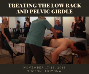 Treating Low Back and Pelvic Girdle