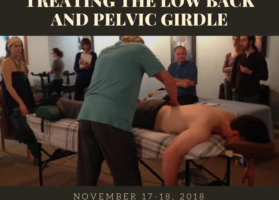 Workshop: Treating The Low Back and Pelvic Girdle