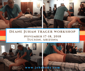 Treating Low Back and Pelvic Girdle Workshop