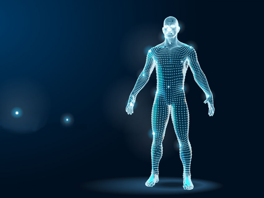 Webinars for Body workers with Deane Juhan - 3D image of a man.