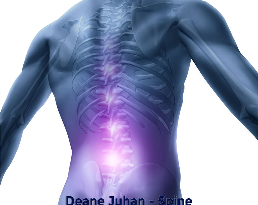May 30 Webinar: Somatic Movement Therapy – Spine